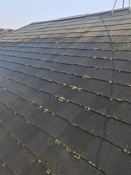 コロニアル屋根塗装(施工前)
