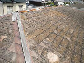 paint_roof_01